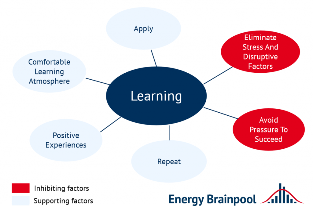 Factors influencing learning (source: Energy Brainpool).